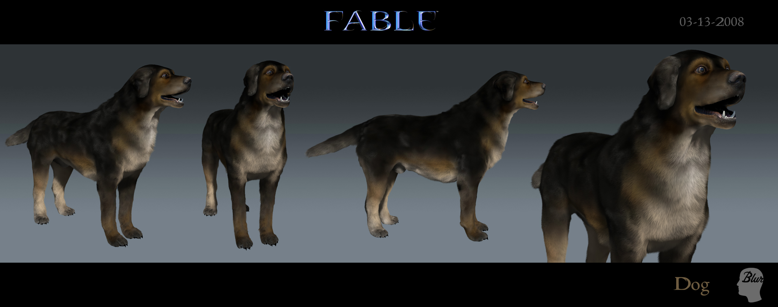 Dog_2008-03-13.jpg