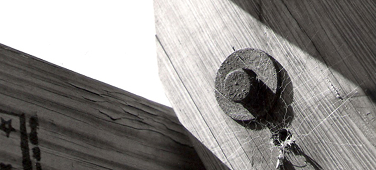 Wood Wagan_1.jpg