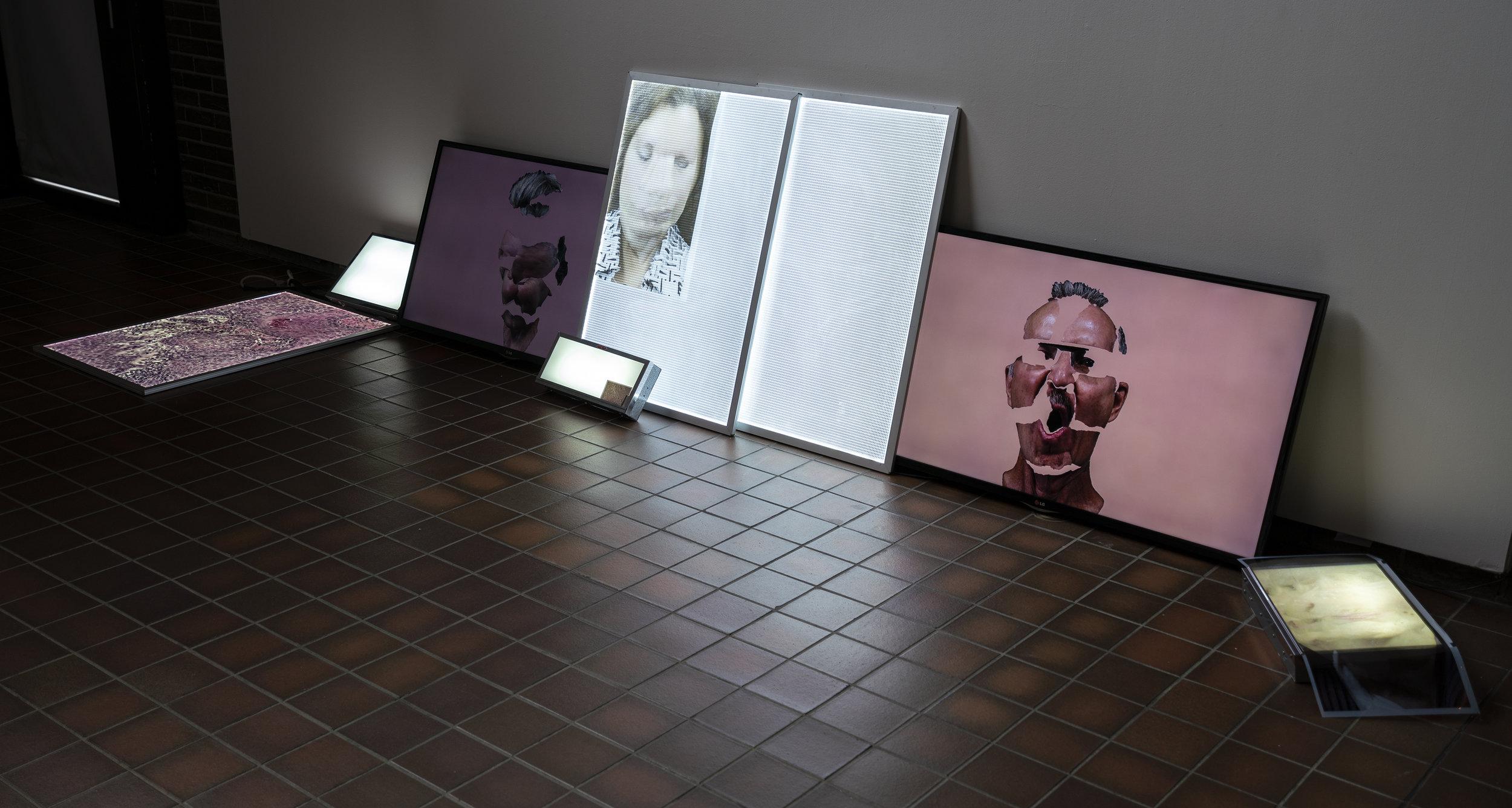 Installation short September 2018, FAB Gallery, Edmonton, AB