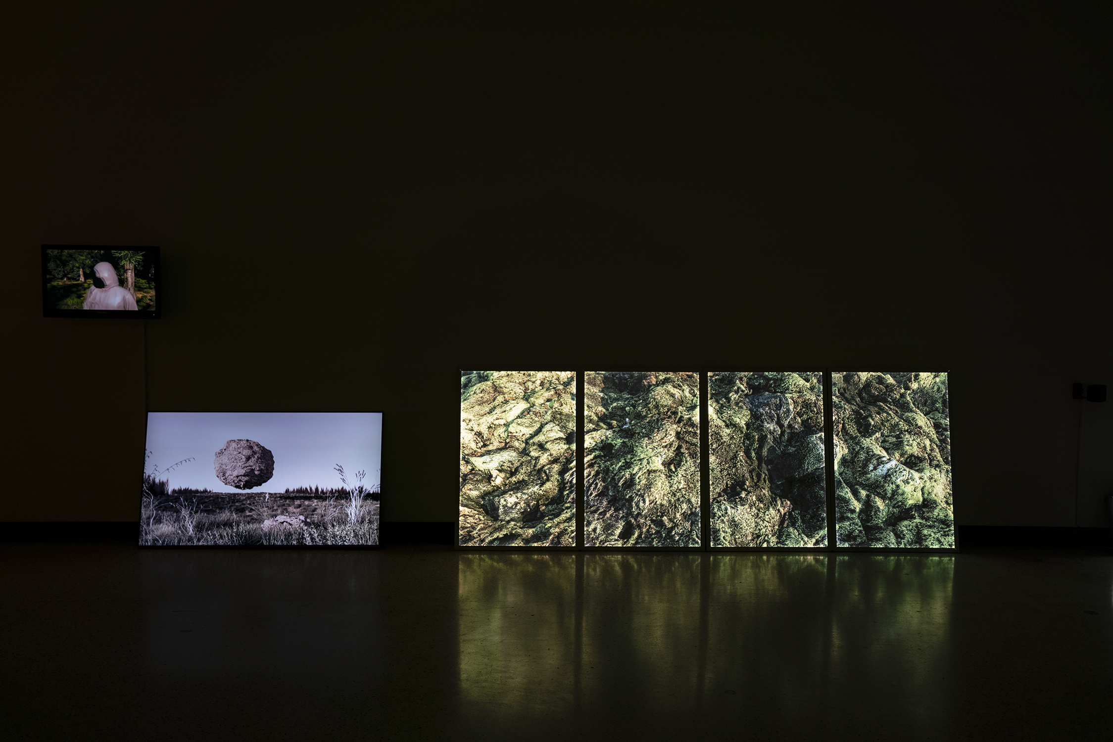"""""""to Witness"""" - 3 videos on TV, single 1-minute video on TV, and 4 part light box photograph (3 x 8 feet)"""