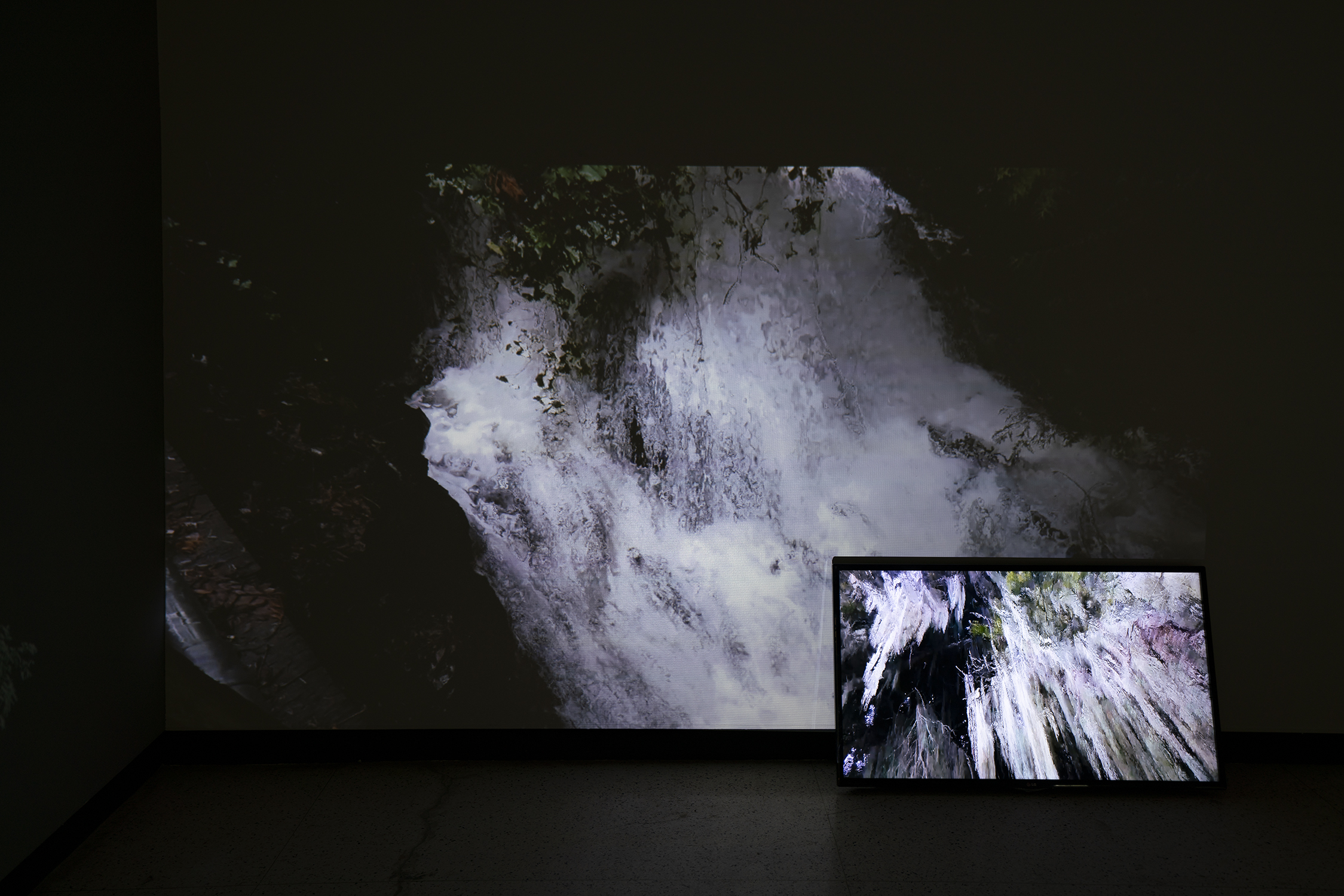 """""""Field Recordings"""" - 2 minute video projection and TV"""