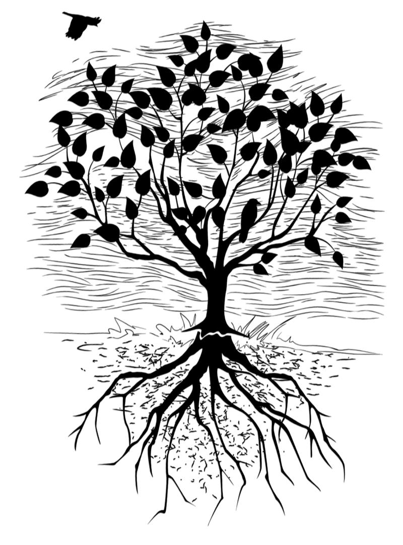 treeroosts.png