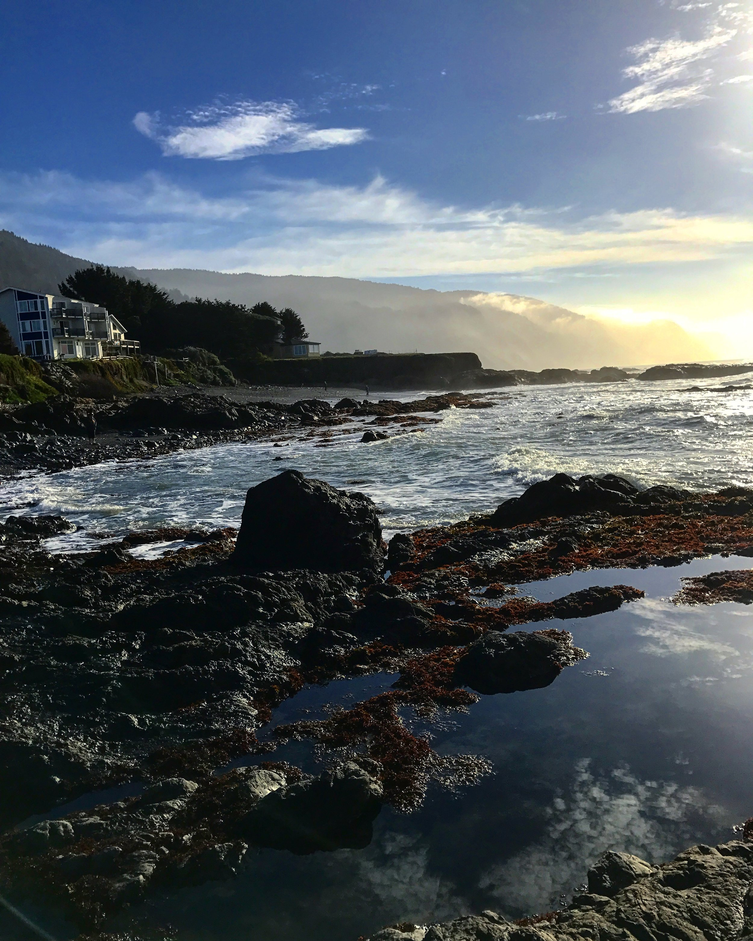 Tide pools at Shelter Cove in California.
