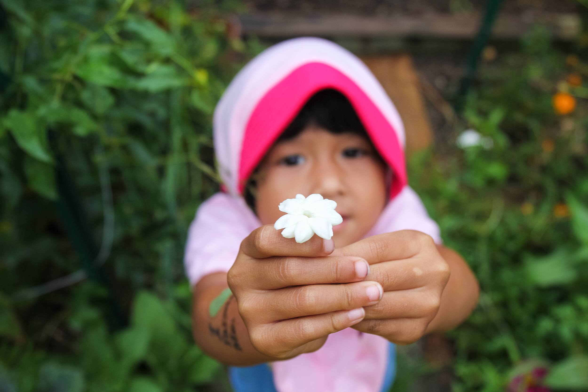 A daughter of the Caspari's displays a flower she found while running through the farm rows. Flowers are welcome surprise plants the farm, acting as bug repellants.
