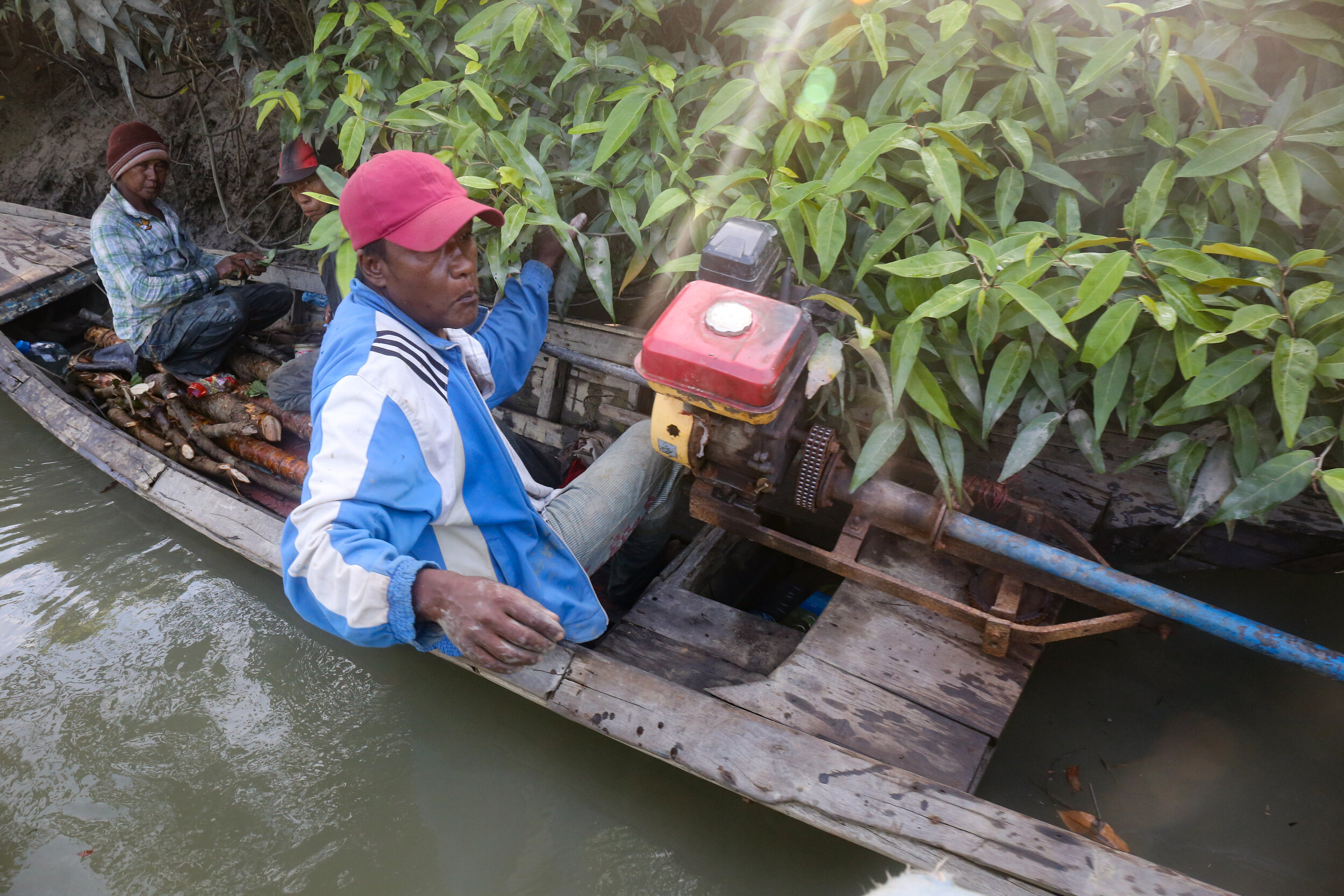 Illegal mangrove harvesters in the Irrawaddy.