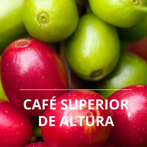 HB2-Cafe-Custepec-A.jpg