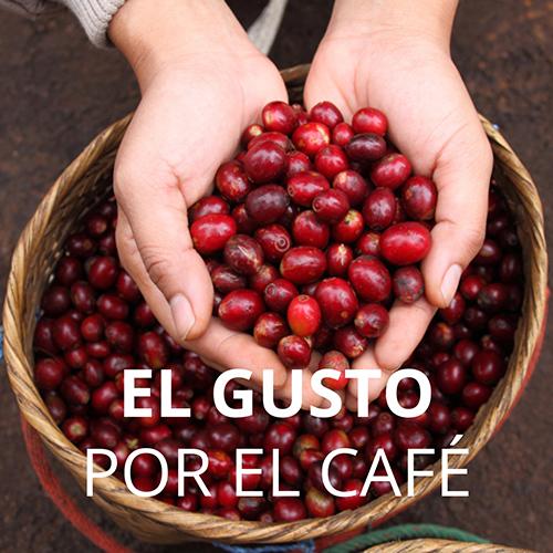 HB7-Cafe-Custepec-A.jpg
