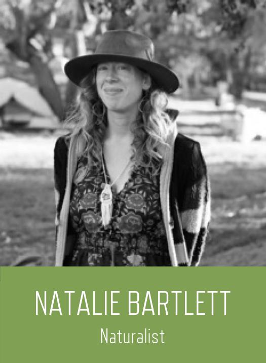 NatalieWebsite.png