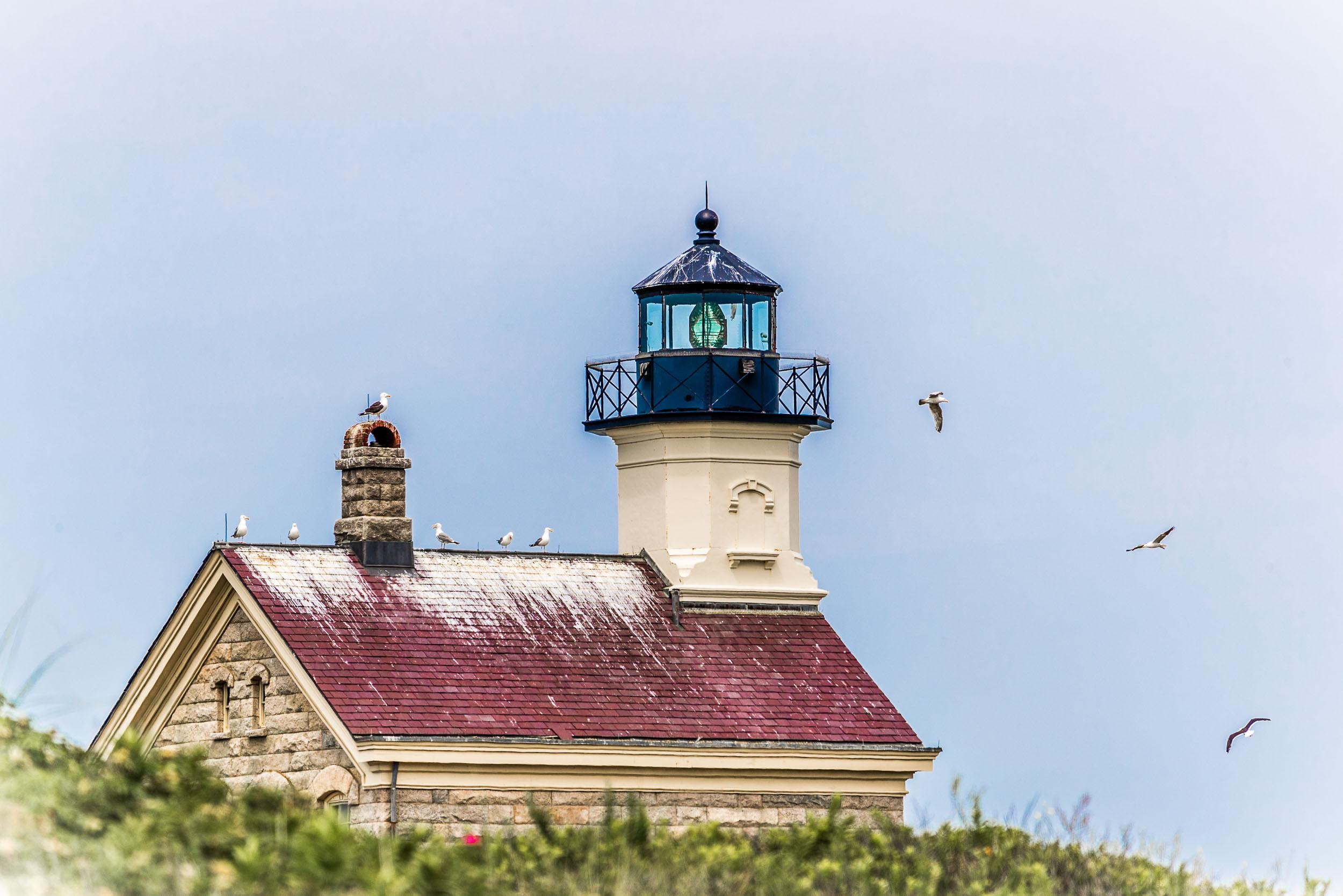 """Home of the Seagulls"", Block Island, RI"