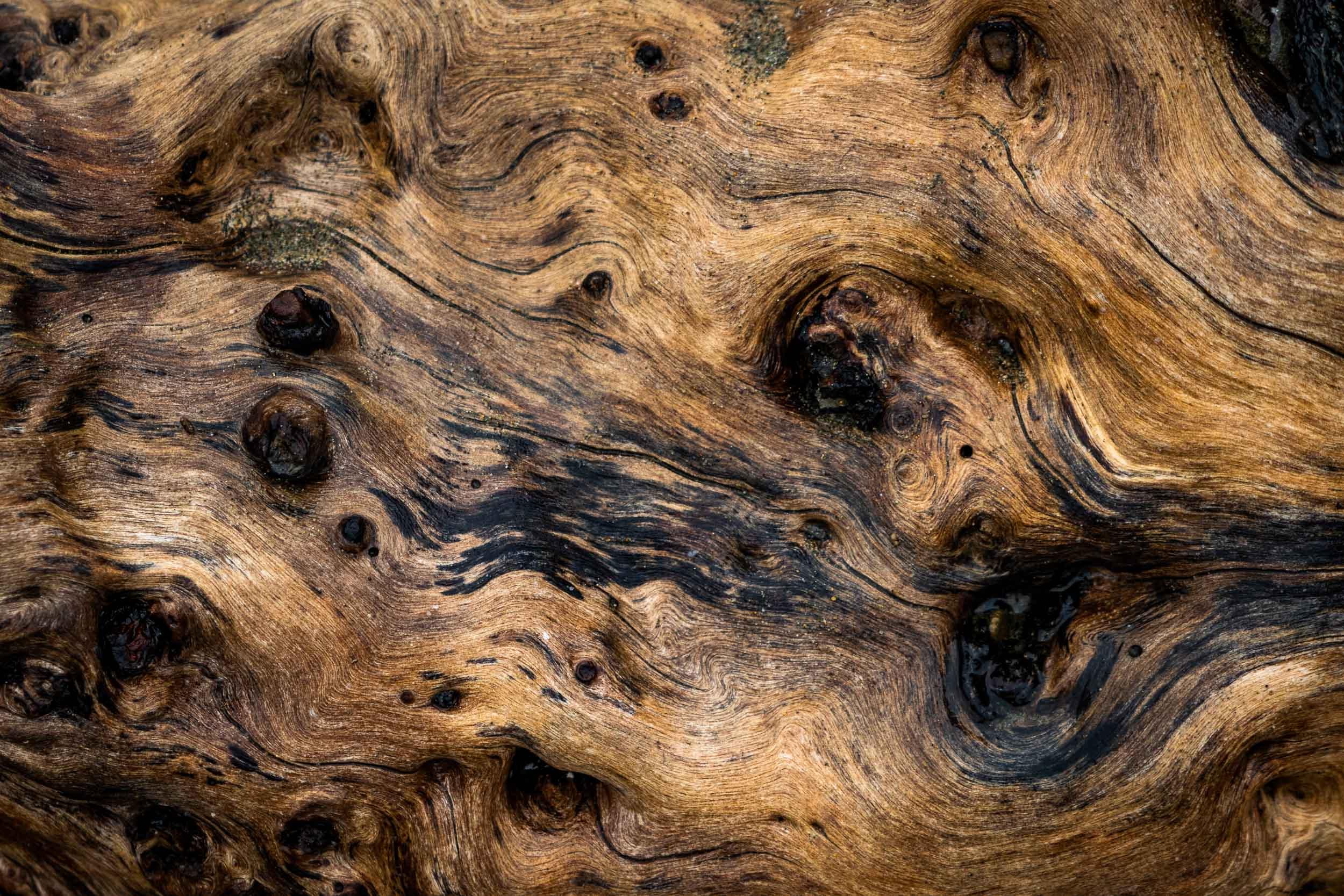"""Driftwood III"", CA"