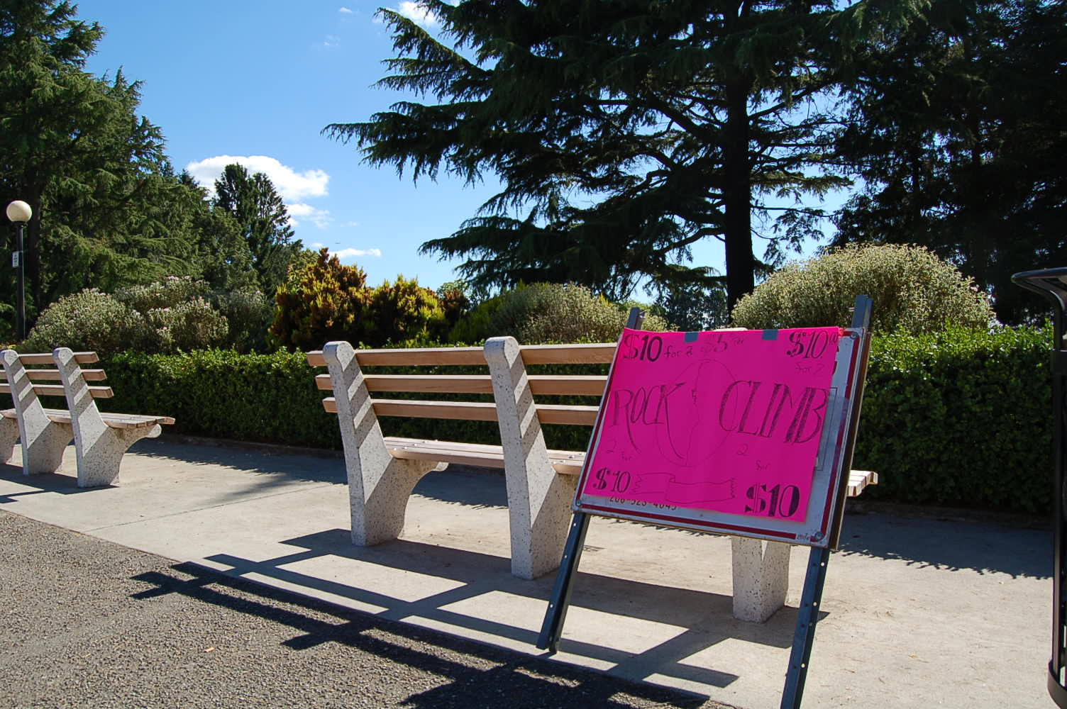 Capitol Hill Bench.jpg
