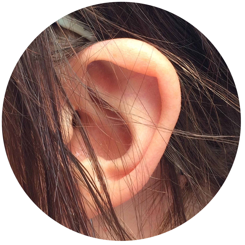 Savannah Ear.jpg