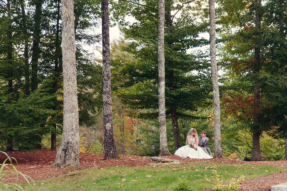 forest-images-couple-brittany