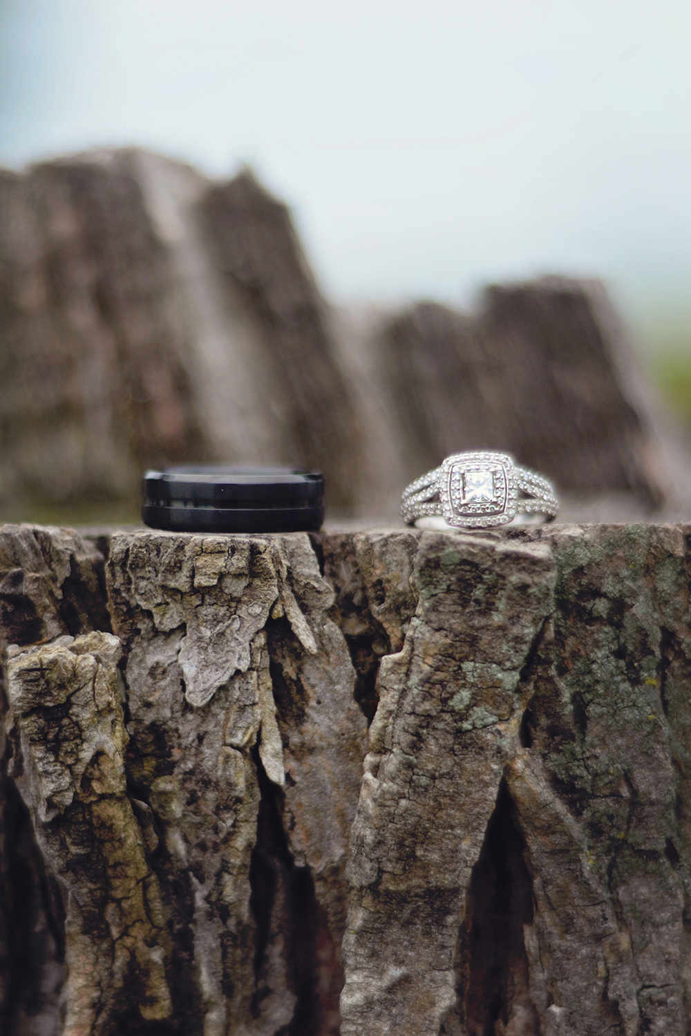 close-up-of-wedding-rings-on-tree-stump