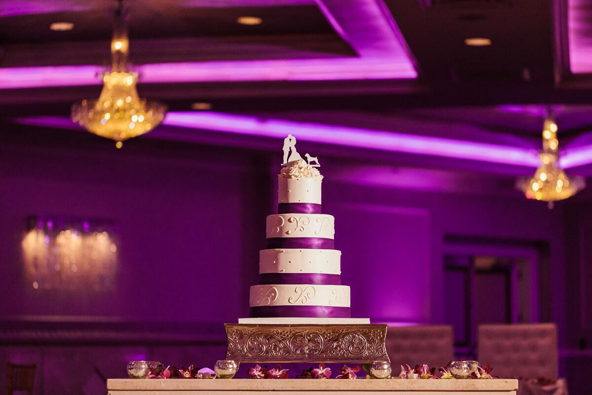 New_Jersey_wedding_photographer_Peter_Rigo_Photography_Wilshire Grand Hotel_Robyn_Steven__56_web.jpg