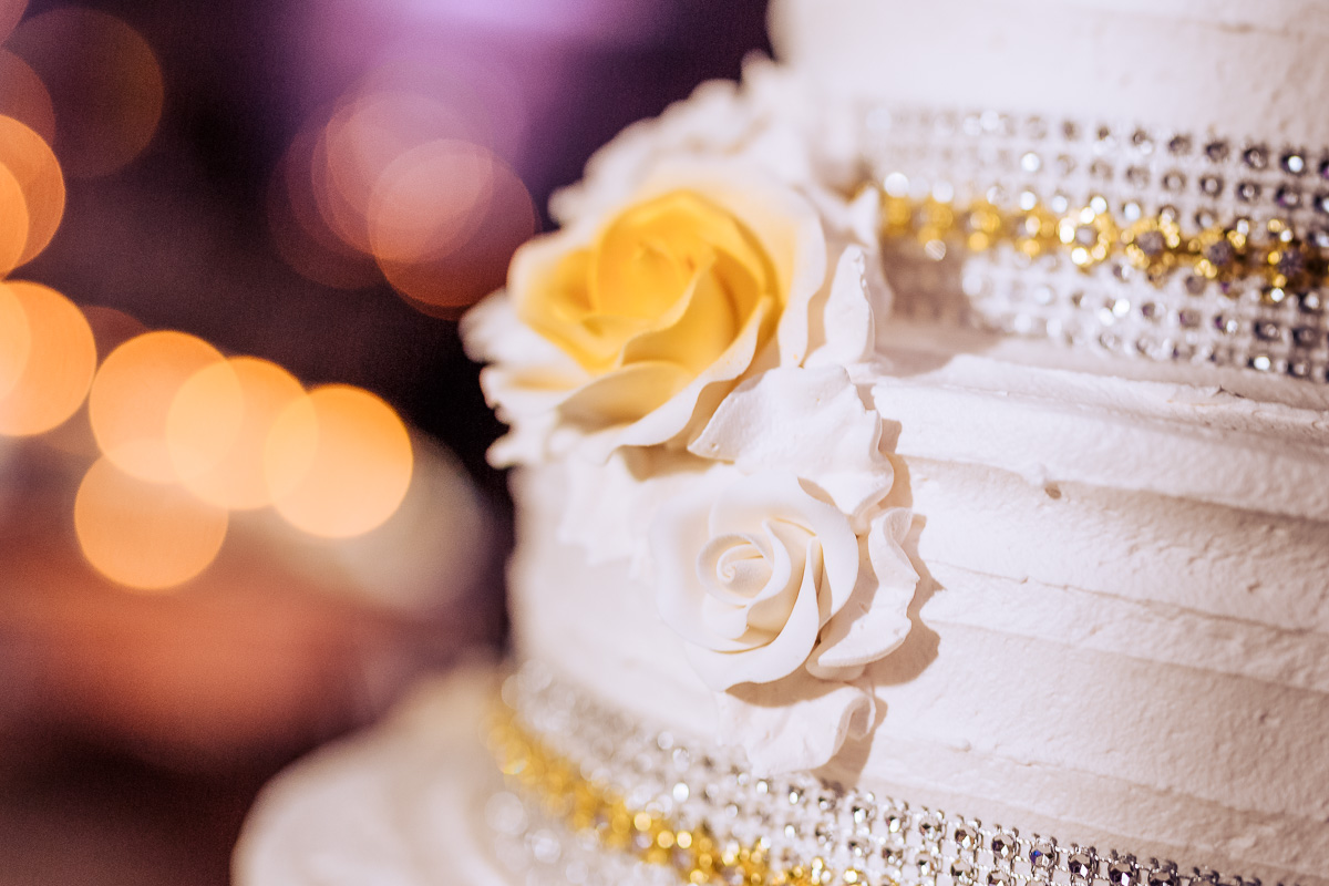 New_Jersey_wedding_photographer_Peter_Rigo_Photography_Park Savoy__104_web.jpg