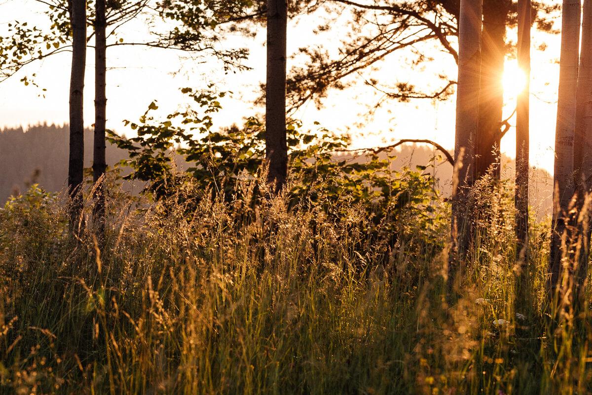 Slovensky_svadobny_fotograf_Peter_Rigo_Photography_Vysoke_Tatry__09_web.jpg