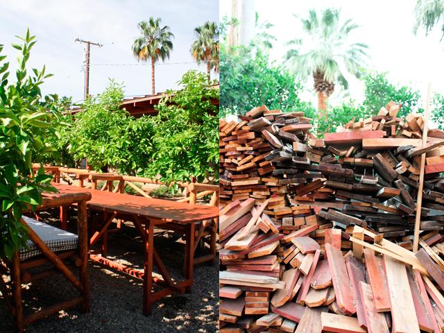 palm springs 14.jpg