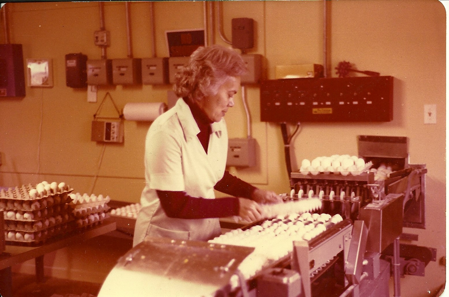 "Grandma ""running eggs"" at their chicken farm in Colorado. She was nothing if not a hard and dedicated worker."