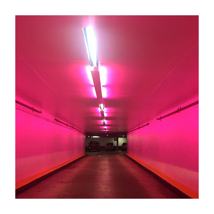 Enter With Caution  (2016) Archival pigment print (framed in black) 15cm x 15cm (Edition of 10 + 2 AP)