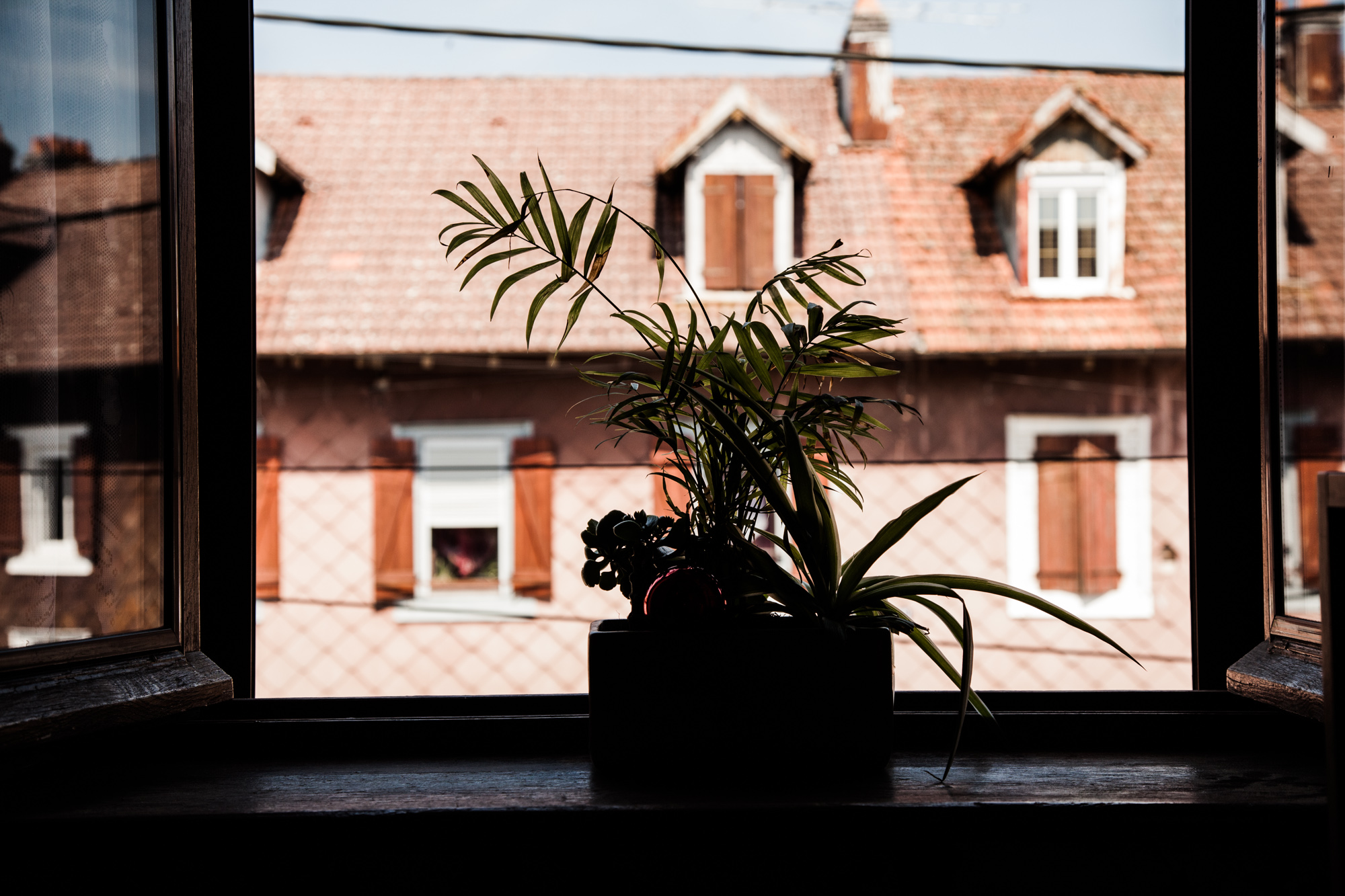 9 Juillet 2013. Rue de la Vologne, depuis chez Jacky.  Extrait du projet webdocumentaire   Les Pieds dans la France  , co-réalisé avec Stéphane Doulé et Camille Millerand.