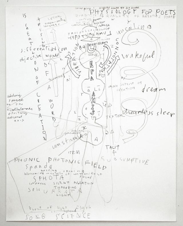 (c)Robert Kocik- Physiology for Poet
