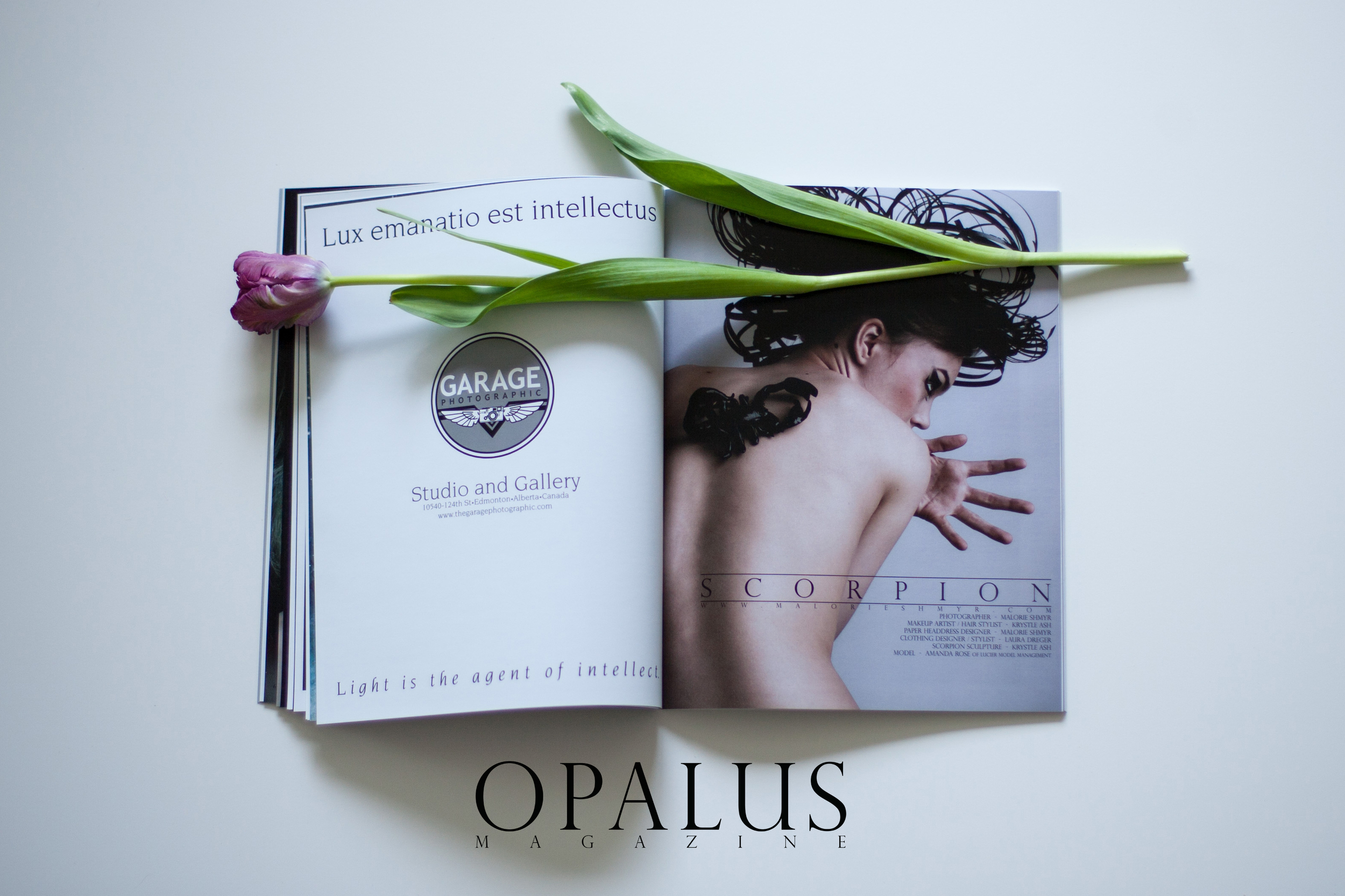 A Photo of OPALUS Magazine - Issue 1