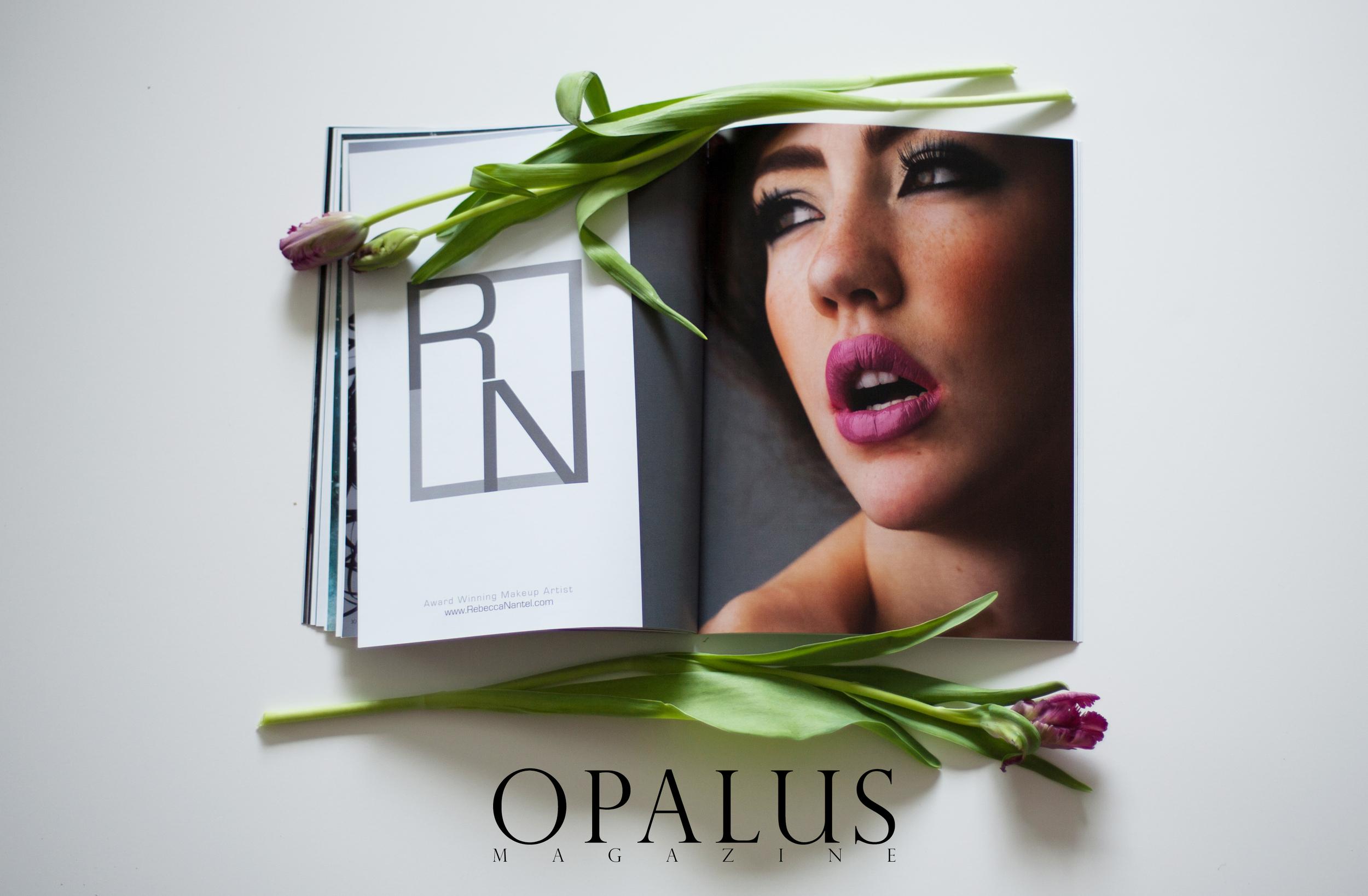 A photo of Rebecca's advertisement inside the pages OPALUS Magazine!