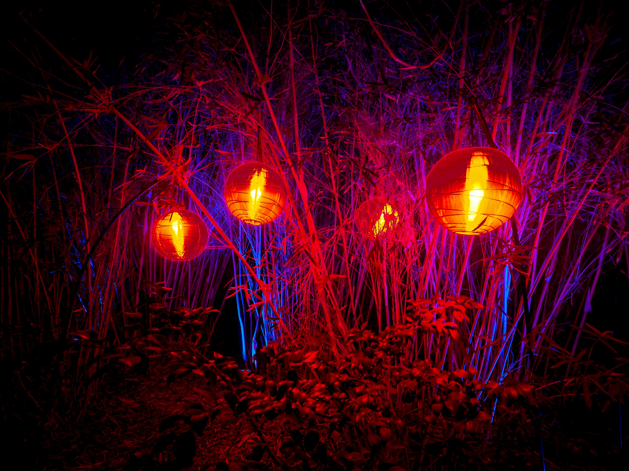 Illuminated Lanterns