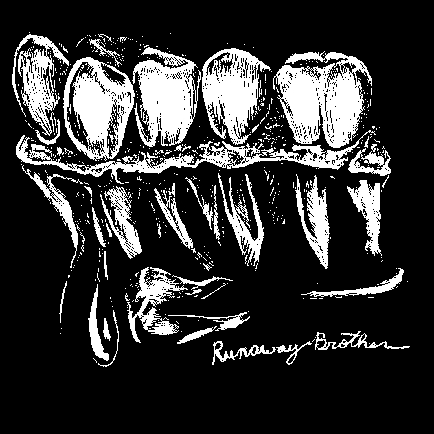 Runaway Brother Patch (2016)   https://runawaybrother.bandcamp.com/