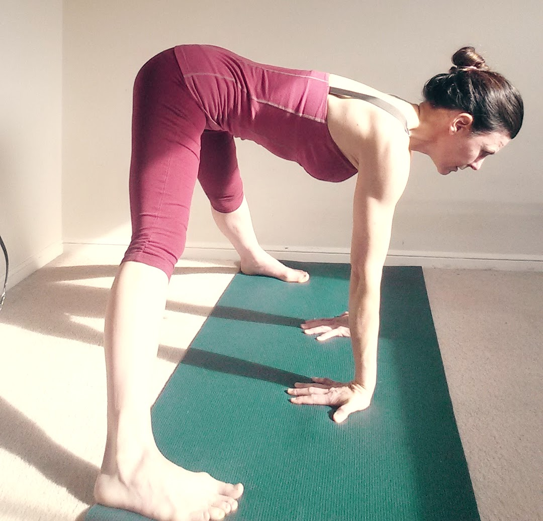 prasarita padattonasana concave hands backwards.jpg