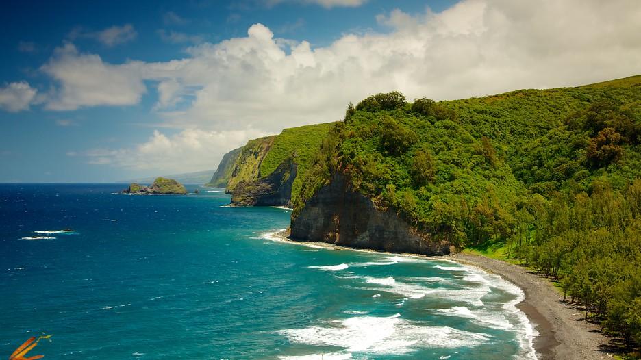 Pololu-Valley-Overlook-big island.jpg