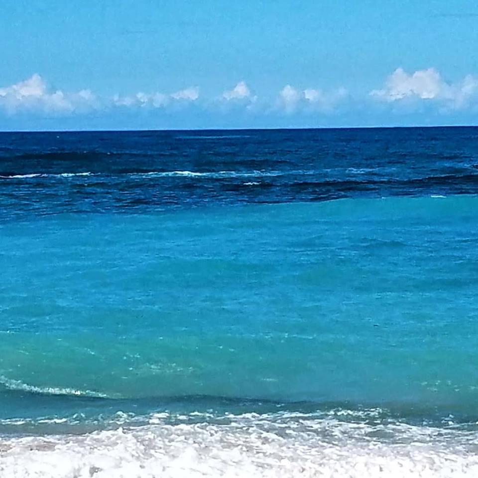 Photo by Jennifer Presuttie on Mauii