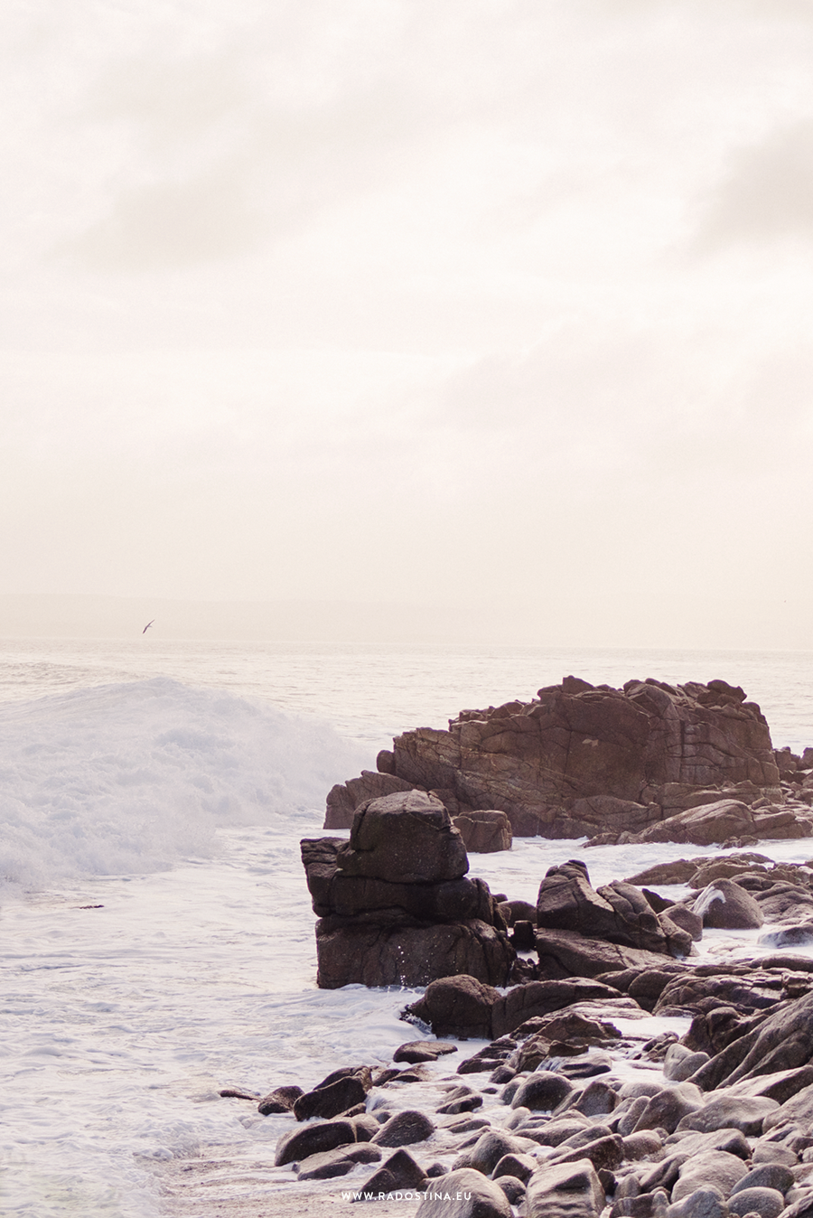 radostina_surfers_00.png