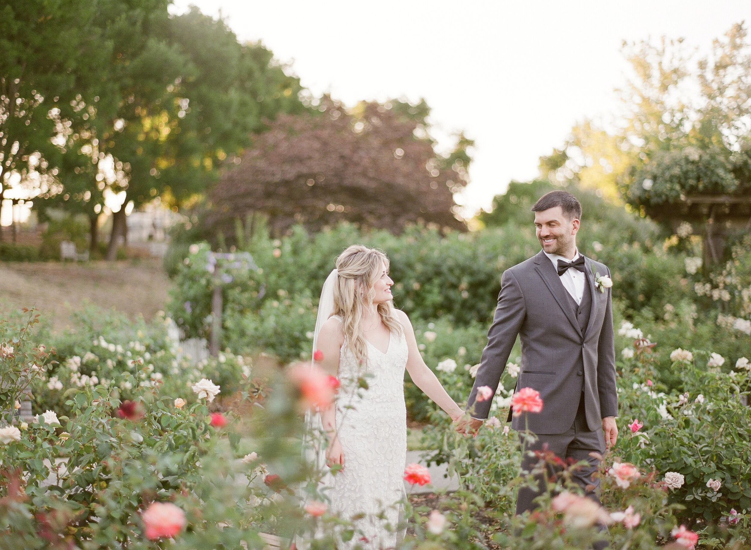 L + T Wedding :: WALNUT CREEK   WEDDING