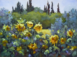 Sunflower Fields -  www.sharonlynnwilliams.com