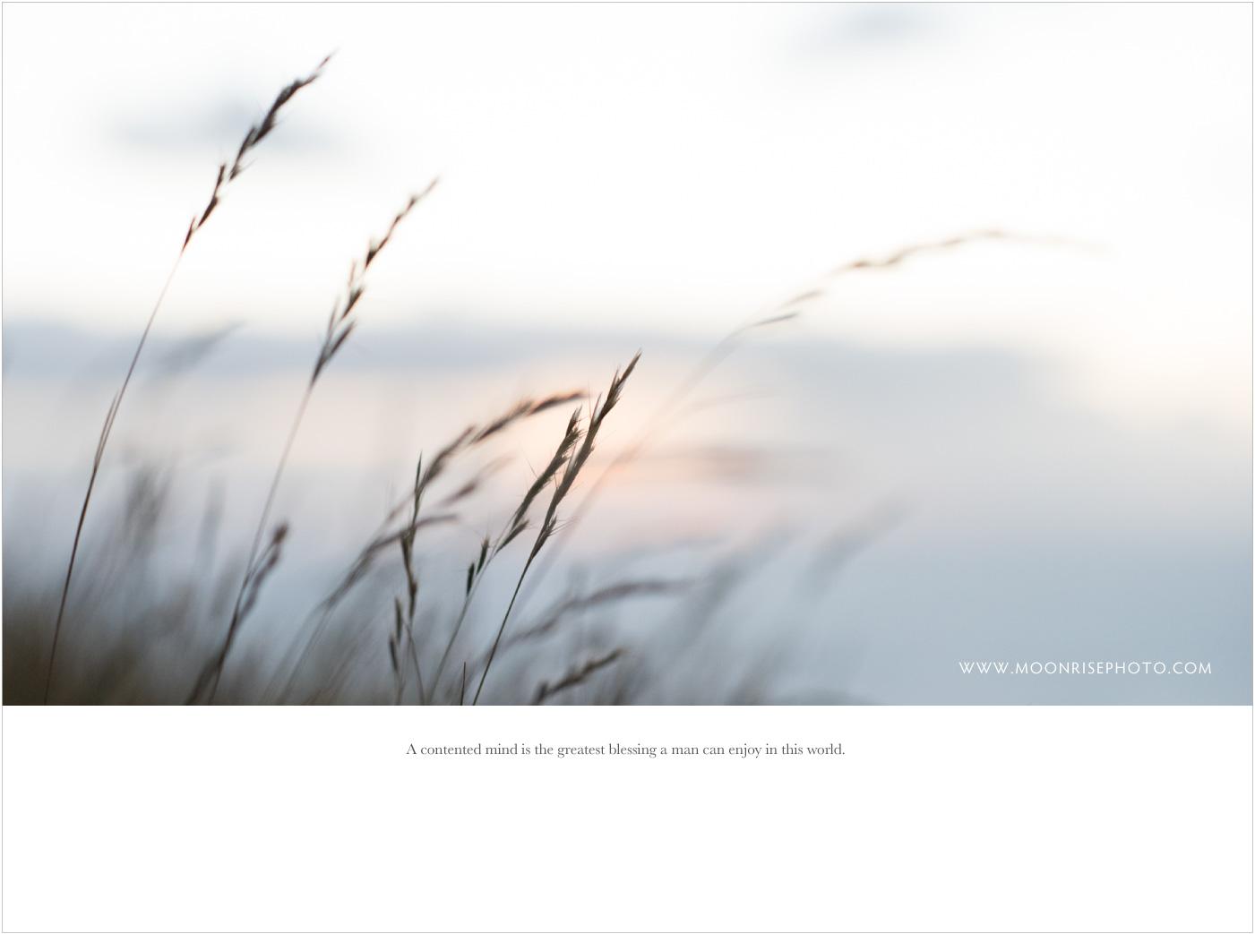 Moonrise_Prewedding
