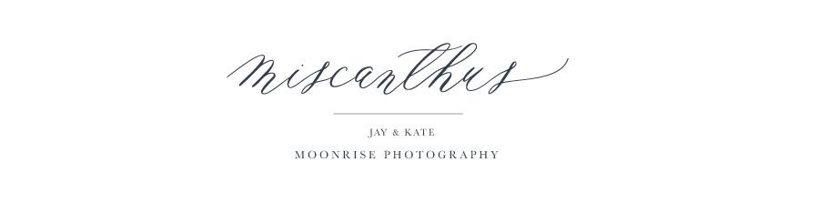 Moonrise_Photography