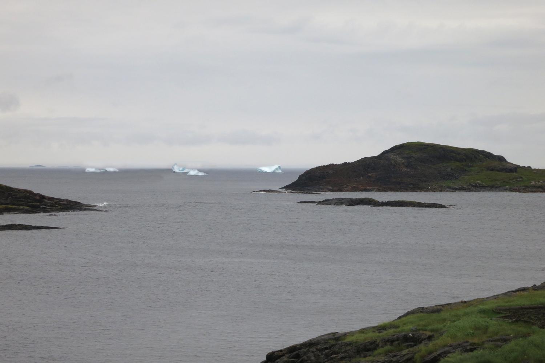 icebergs in Fogo.jpg