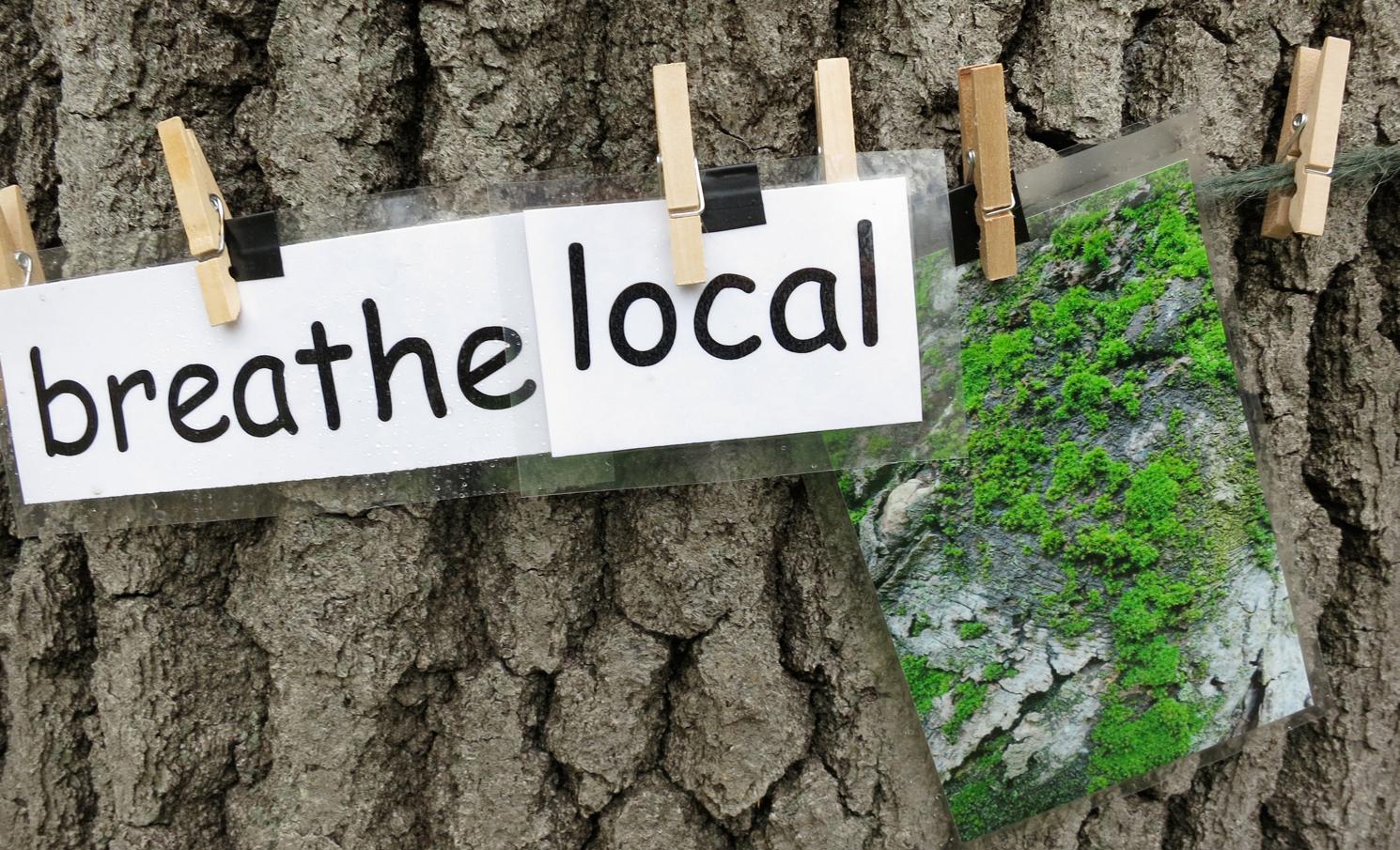 Breathe+local+moss.jpg