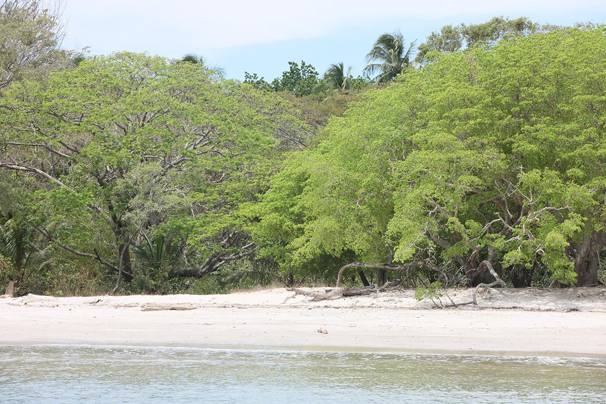 White Sand Island in the Gulf of Nicouya