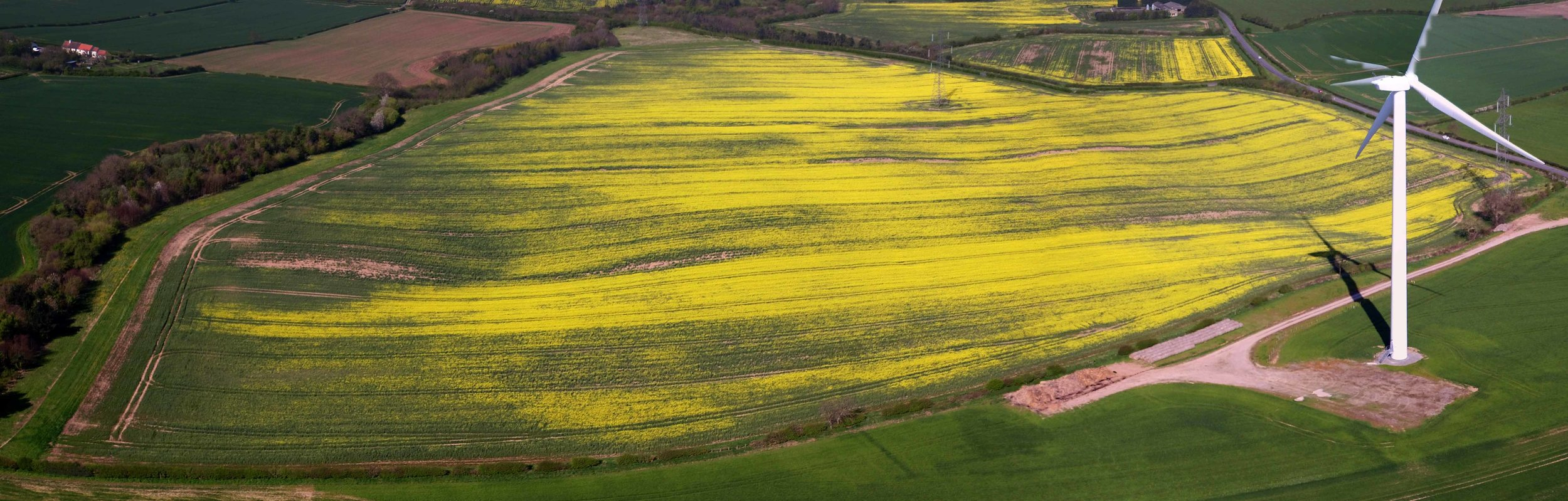 ... yet through the use of aerial imaging, assessing continued crop growth conditions and to detect any potential problems can be timely ascertained from the air.