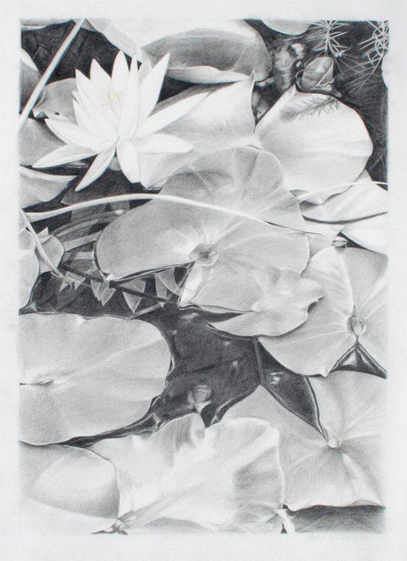 """Lilies, 18"""" x 13"""""""