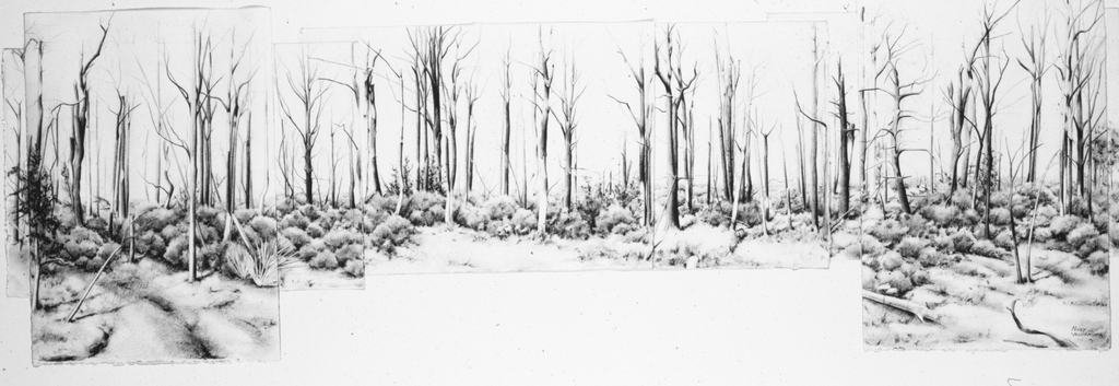 """After the Fire, 26"""" x 57.5"""""""