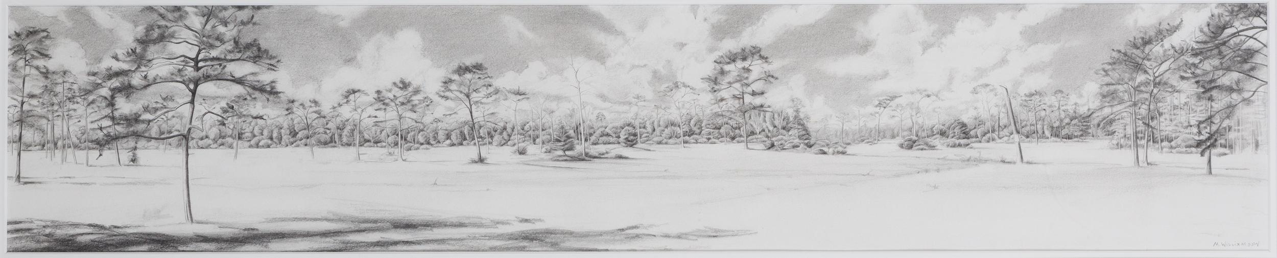 Landscape, 210 West.jpg
