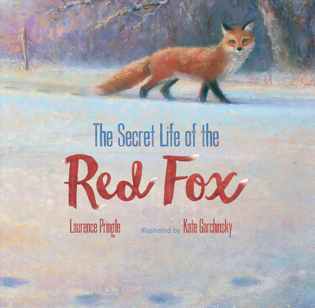 Secret life of the red fox jacket.jpg