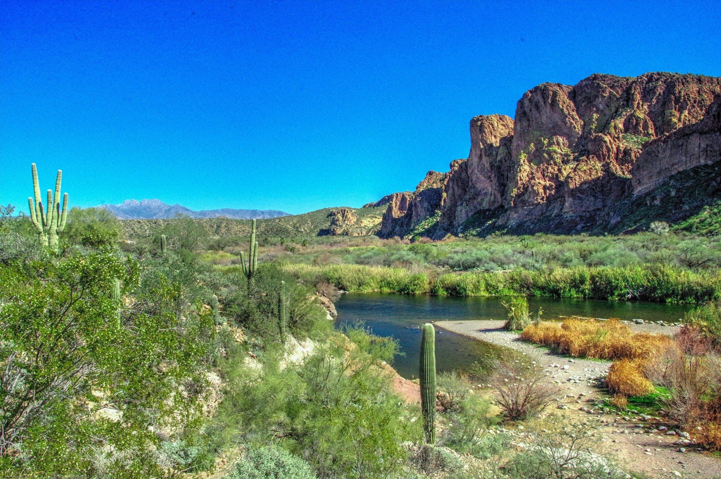 7412. Salt River..jpg