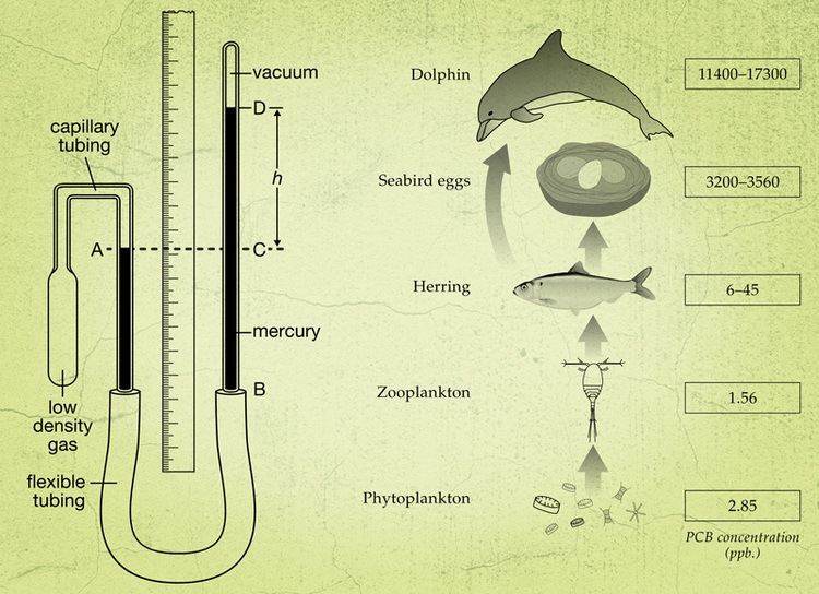 TPR-science-illustration-1.jpg