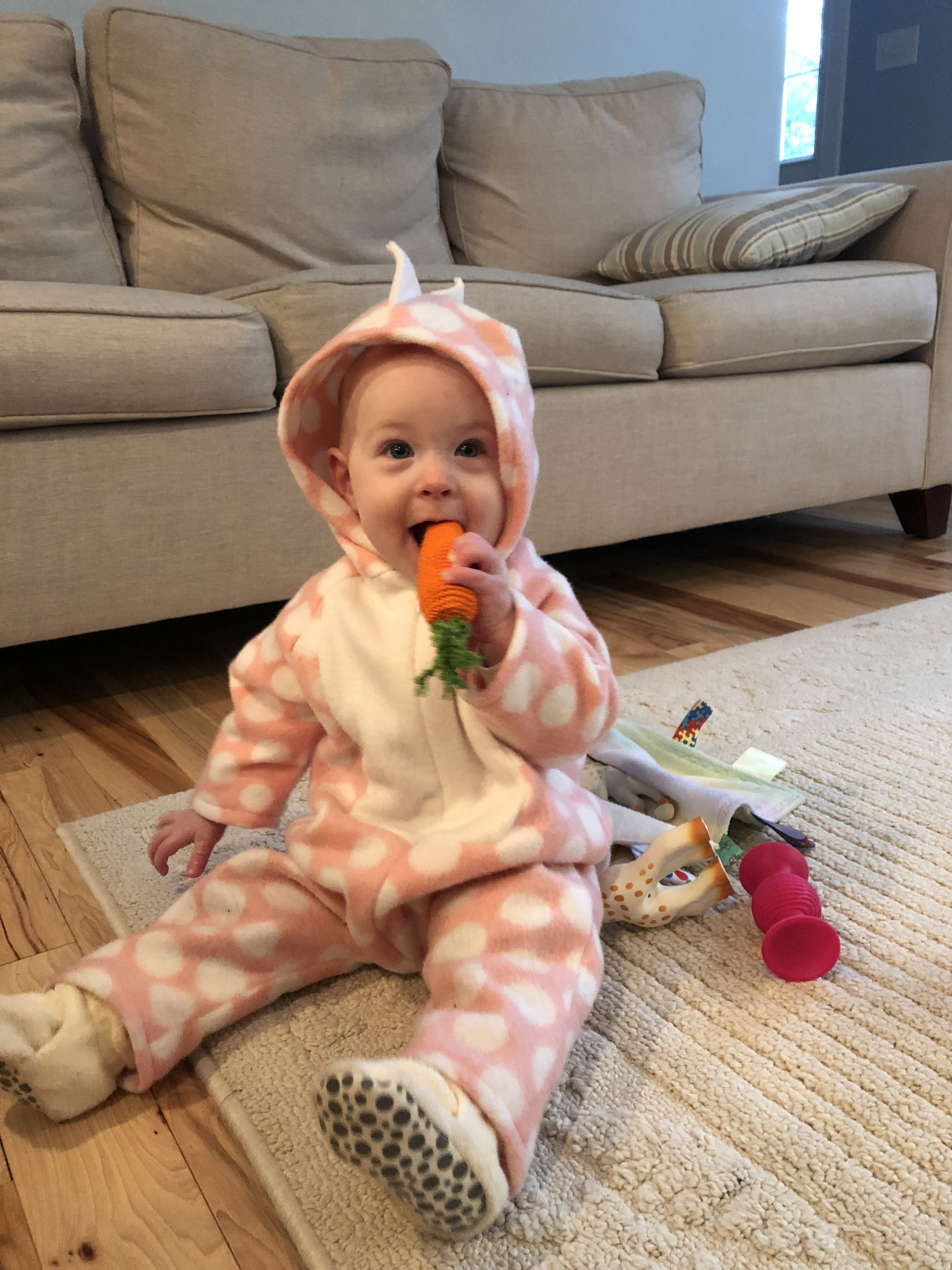 Here's an unrelated blurry picture of her eating a crocheted carrot, because it's cute.