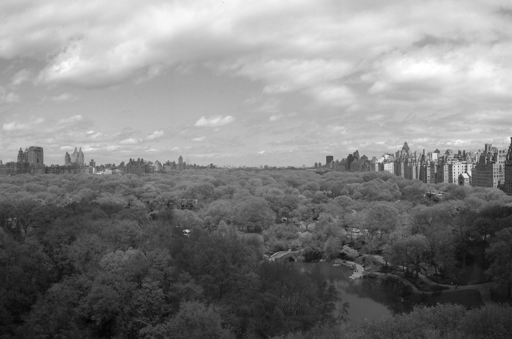 Central Park Overhead_NYC.jpg
